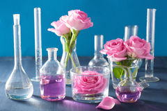 Alchemy and aromatherapy set with rose flowers and chemical flas. Ks Stock Photos