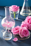 Alchemy and aromatherapy set with rose flowers and chemical flas Stock Image