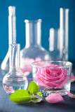 Alchemy and aromatherapy set with rose flowers and chemical flas royalty free stock images