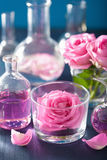Alchemy and aromatherapy set with rose flowers and chemical flas Stock Photography