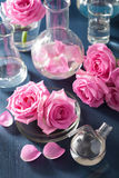 Alchemy and aromatherapy set with rose flowers and chemical flas Royalty Free Stock Photo