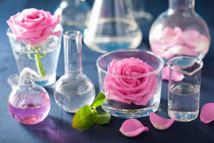 Alchemy and aromatherapy set with rose flowers and chemical flas. Ks Royalty Free Stock Photography