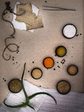 Alchemy Lab. dried herbs, salt, flasks, recipes on the old canvas. top view. Alchemy Lab. dried herbs, salt, flasks, pipettes recipes on the old canvas Stock Photos