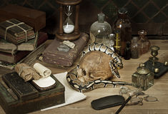 Alchemy still life with Royal Python. Snake royalty free stock images