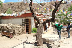 Alchi Monastery Royalty Free Stock Photo