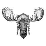 Alci, animale selvatico degli alci che indossa il copricapo indiano del cappello con il illustraton tribale di immagine etnica di royalty illustrazione gratis