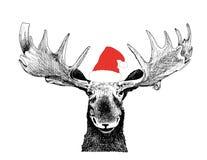 Alci divertenti di natale con il cappello del Babbo Natale royalty illustrazione gratis