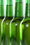 Alcohol beer drinks in bottles Stock Images