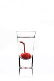 Alcohol cocktail with cherry in shot glass Royalty Free Stock Photo