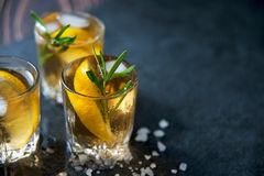 Alcohol cocktail with ice and smoking rosemary on dark table lemon. Alcohol cocktail with ice and smoking rosemary on dark table with lemon and salt Royalty Free Stock Photos