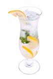 Alcohol, cocktail met citroen en ijs Royalty-vrije Stock Fotografie