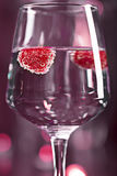Alcohol cocktail with raspberry Stock Images