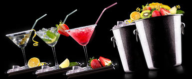 Alcohol cocktail set with summer fruits Stock Photography