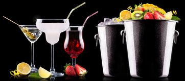 Alcohol cocktail set with summer fruits Stock Images
