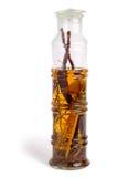 Alcohol con la serpiente Imágenes de archivo libres de regalías