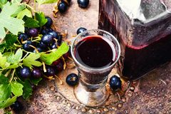 Alcohol currant drink stock image