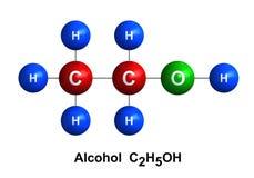 Alcohol vector illustration