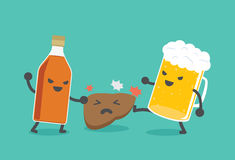 Alcohol damage the liver. Liquor bottles and beer are damaging the liver. This illustration describe to drinking alcohol inflict severe damage to the liver Stock Image