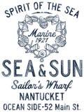 Alcohol de la cáscara del mar Fotografía de archivo