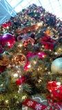 Alcohol de la Navidad? con Santa y Noel Fotos de archivo