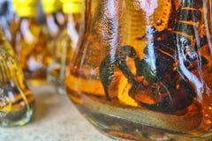 Alcohol del escorpión y de la serpiente Imágenes de archivo libres de regalías