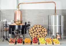 Alcohol distillery Royalty Free Stock Image