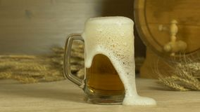 Alcohol drink beer pour into a glass against the backdrop of a barrel and a bunch of wheat stock video