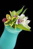 Alcohol drink, cocktail with flower, isolated Stock Image