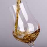 Alcohol drink pouring into glass isolated Stock Photography
