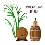 Alcohol drink, rum, glass, barrels and sugarcane. Flat style. Royalty Free Stock Photos
