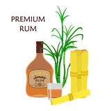 Alcohol drink, rum, glass and sugarcane. Flat style. Stock Image