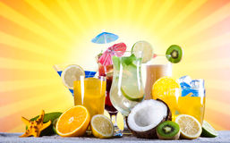 Alcohol drinks set with fruits Stock Images