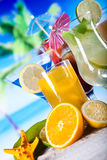 Alcohol drinks set with fruits Royalty Free Stock Images