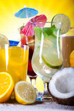Alcohol drinks set with fruits Stock Photography
