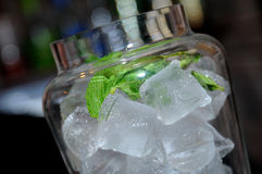 Alcohol with ice and mint Stock Photography