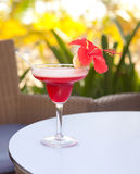 Alcohol margarita cocktail with lime and hibiscus flower Royalty Free Stock Images