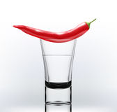 Alcohol with pepper Royalty Free Stock Photography