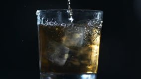 Alcohol is poured to the glass with ice cubes in slow motion, barman makes drinks, 240 frames per second. Alcohol is poured to the glass with ice cubes in slow stock footage
