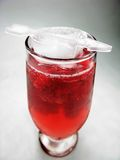 Alcohol punch cocktail drink with mint Royalty Free Stock Images