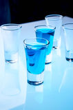 Alcohol in shot glasses Royalty Free Stock Photos