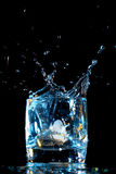 Alcohol splash Royalty Free Stock Image