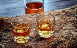 Alcohol,taste and drink concept. Royalty Free Stock Photography
