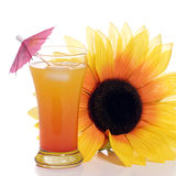 Alcoholic Beverage. A tequila sunrise drink with an artificial sunflower beside it, shot on a white background Royalty Free Stock Images