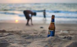 Alcoholic, Beverage, Beach Royalty Free Stock Photography