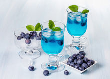 Alcoholic cocktail with blueberries and mint. Stock Images
