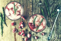 Alcoholic Cocktail, rosemary, Fruity cocktail, raspberry, strawb. Alcoholic Cocktail. Fruity cocktail drink with the addition of alcohol is decorated with frozen Stock Photography