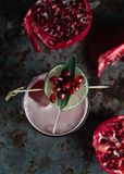 Alcoholic cocktail garnished with pomegranate seeds. On dark moody background royalty free stock images