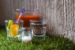 Alcoholic cocktail mix set for drinking tequila silver on the grass. Set for drinking tequila is tomato juice with spices lime with orange salt and tequila Royalty Free Stock Photo