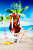 Alcoholic cocktails with fruits, natural colorful tone Royalty Free Stock Images