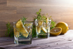Alcoholic drink with lemon and ice Stock Image